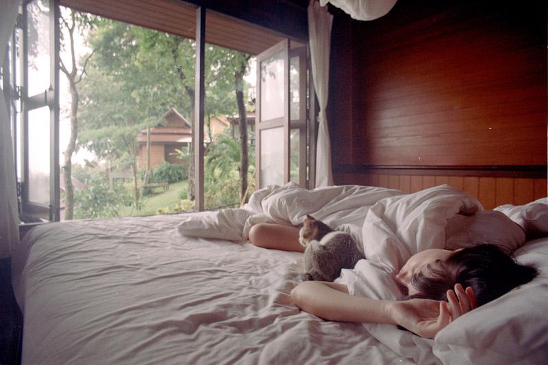 утро в деревне картинки люди спят